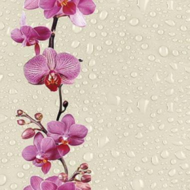 136 Дикая орхидея